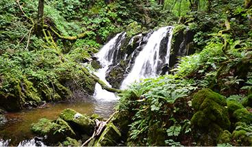 Fujisawa Falls_photo